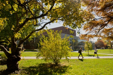 Students walking across the quad in summer.