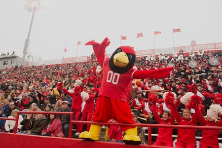 Reggie with a crowd filling the stands at a football game.